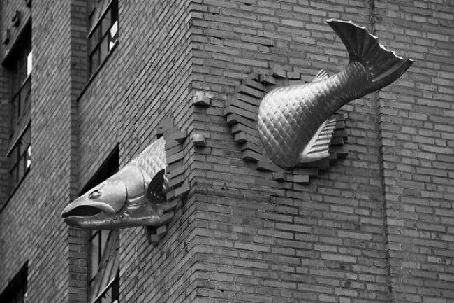 лосось - копия